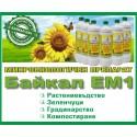 Байкал ЕМ-1